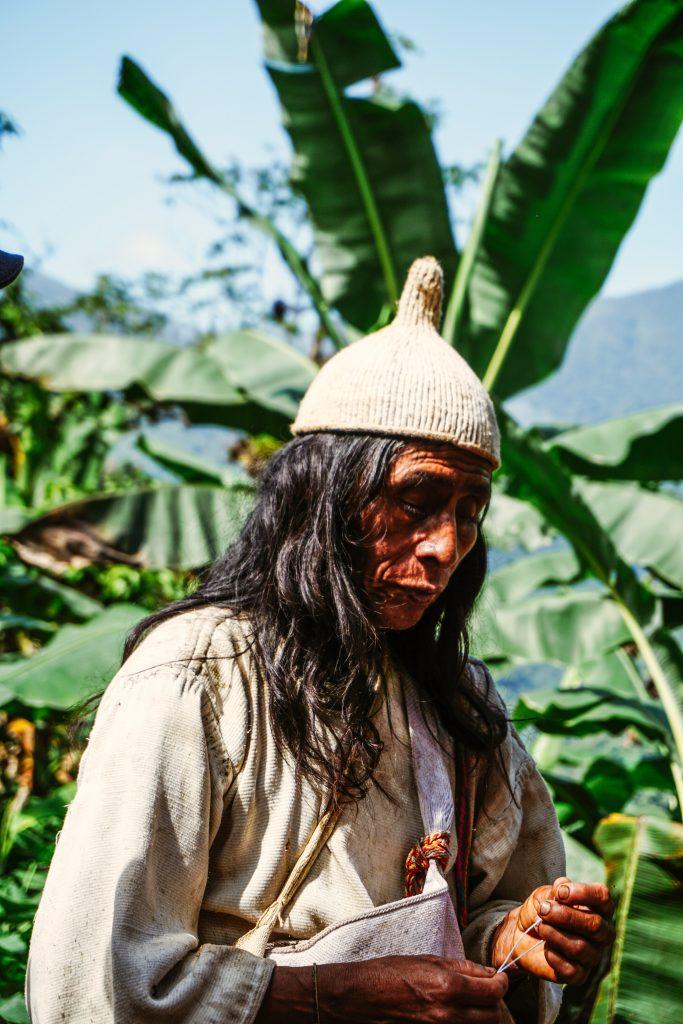 Mamo de la Sierra Nevada de Santa Marta