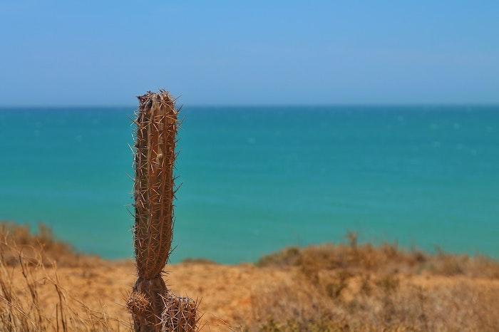 Cabo de la Vela, Guajira. Imagen de Roxanne Desgagnés en Unsplash